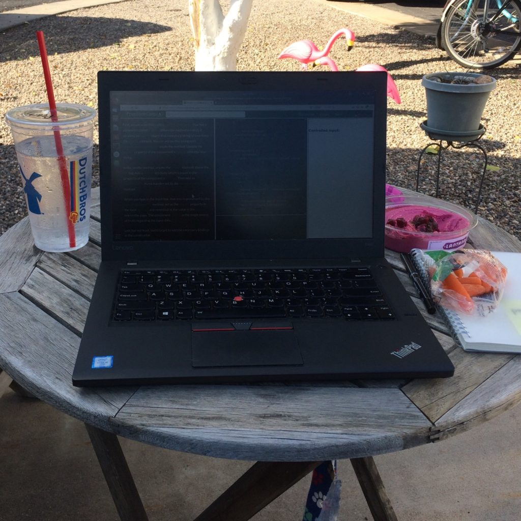 A laptop on a small wooden table outdoors, with a cup of water on the left and carrots and beet hummus on the right. Two pink flamingos and a potted plant are in the background.