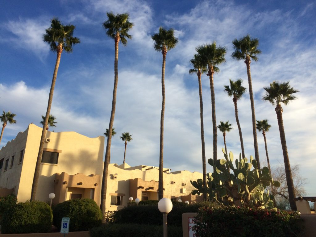 extremely tall palm trees in front of a stucco building with blue skies and wispy clouds.