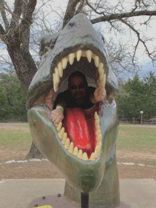 a large t-rex head, its mouth open, and a human pretending to look scared from inside its mouth.