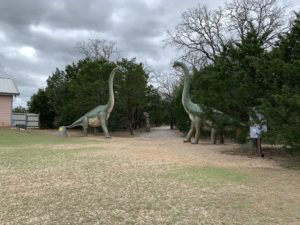two brontosauruses facing each other, on either side of a walking path