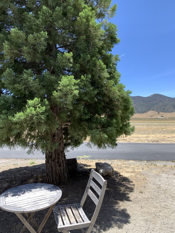 A photo looking out over a wooden chair of a large tree on the left, a large field, and mountains in the background. The sky is blue.